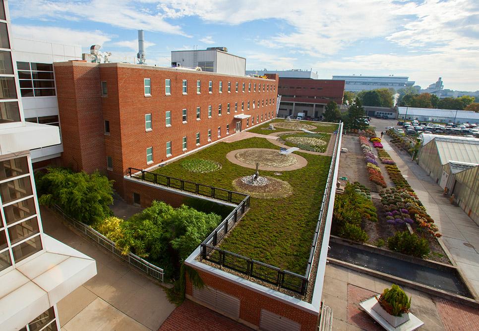 The Ohio State University, Howlett Hall Green Roof